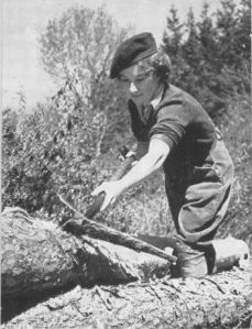 A member of the Women's Timber Corps stripping the bark from a tree to be used as a telegraph pole.