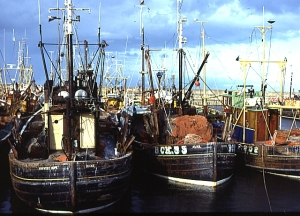 Description English: Buckie Harbour. Fishing boats moored by the quayside at Buckie. Source From geograph.org.uk
